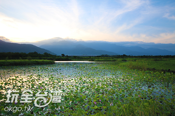 擁有豐富多樣的生態系統讓人欣賞濕地風光/玩全台灣旅遊網攝
