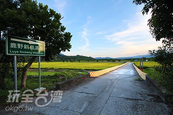 新良濕地為人工濕地解決汙水問題/玩全台灣旅遊網攝