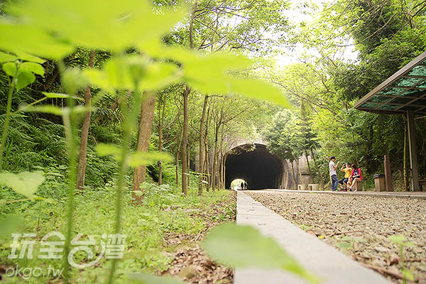 想像龍貓在綠葉下偷看/玩全台灣旅遊網特約記者陳健安攝