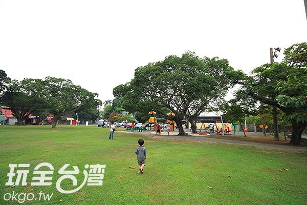 斗六籽公園內有大片草皮/玩全台灣旅遊網攝