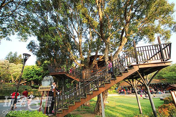 沿著階梯往上攀爬可以抵達樹屋/玩全台灣旅遊網攝