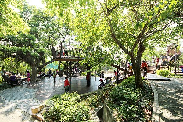 蒼鬱的樹木組成的幽靜自然環境,讓這裡的環境舒適清新/玩全台灣旅遊網攝