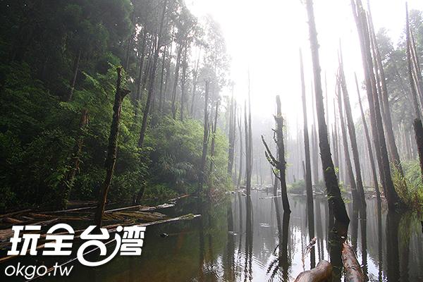 不論是晴朗或是起霧都有不一樣的風情/玩全台灣旅遊網攝