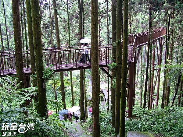 挑高的步道讓遊客更接近大自然/玩全台灣旅遊網攝