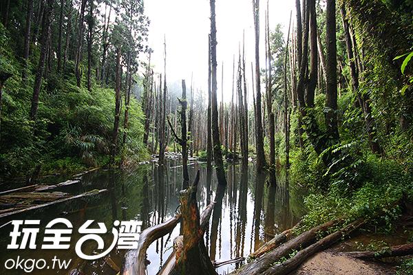因地震而形成的意外美景/玩全台灣旅遊網攝