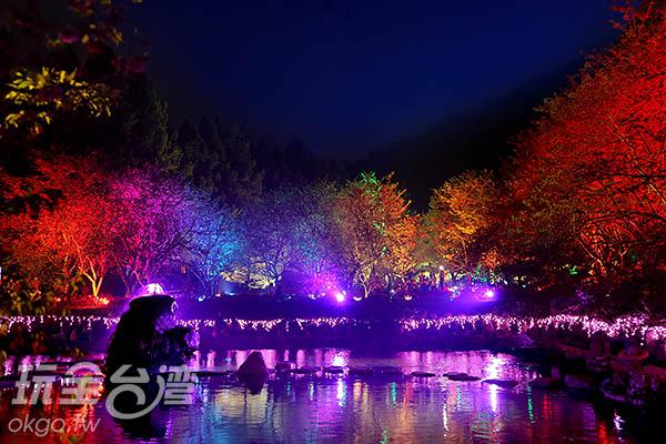 九族的夜櫻活動也是鼎鼎有名/玩全台灣旅遊網攝