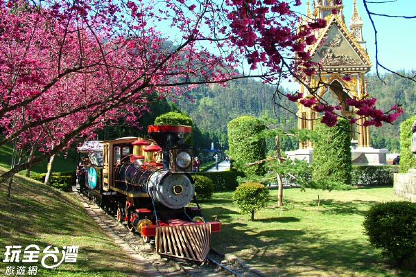每年的櫻花季是九族的大事記/玩全台灣旅遊網攝