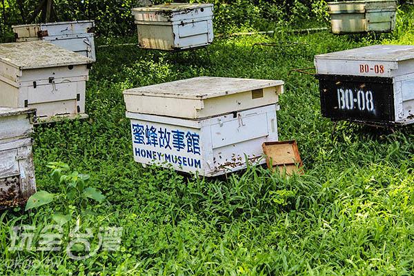 專門養殖蜜蜂的「窩」,讓人好奇打開後的「蜂巢」是否像卡通中的樣子/玩全台灣旅遊網特約記者57魔法Ling攝