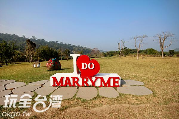 這個夏天一起來浪漫、悠閒一下吧!!/玩全台灣旅遊網攝