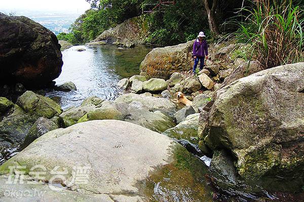 在這裡享受負離子的洗禮,身心都得到解放呢!/玩全台灣旅遊網  特約記者吳明倫攝