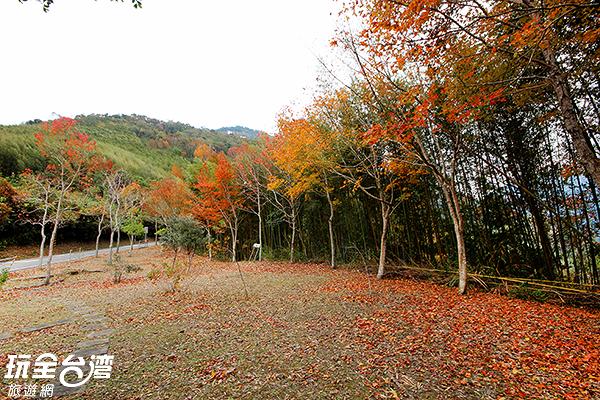 達觀山風景特定區-桃園市復興區/玩全台灣旅遊網攝