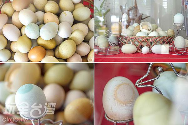 如同收藏寶石般的展示彩色蛋/玩全台灣旅遊網特約記者陳健安攝