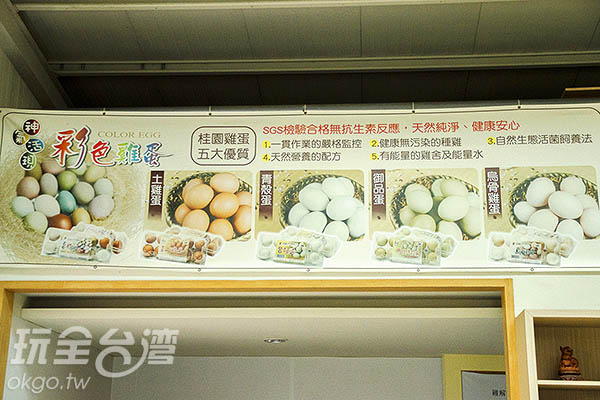桂園自然生態農場有彩色蛋、土雞蛋、青殼蛋、御品蛋、烏骨雞蛋/玩全台灣旅遊網特約記者陳健安攝