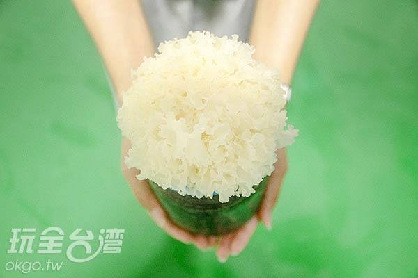 精心培育的銀耳,彷彿新娘捧花般/玩全台灣旅遊網特約記者陳健安攝