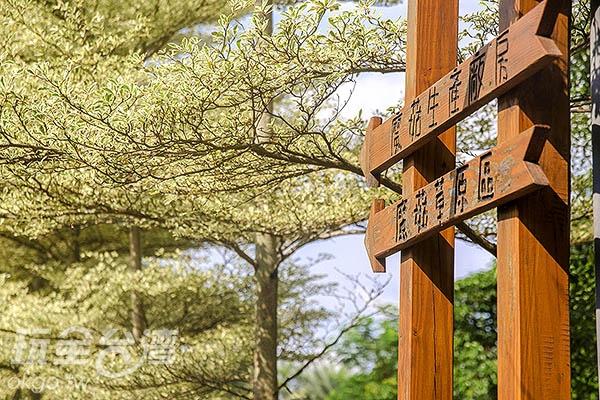 園區內只有一條參觀路線,指標卻標示相當完整/玩全台灣旅遊網特約記者陳健安攝