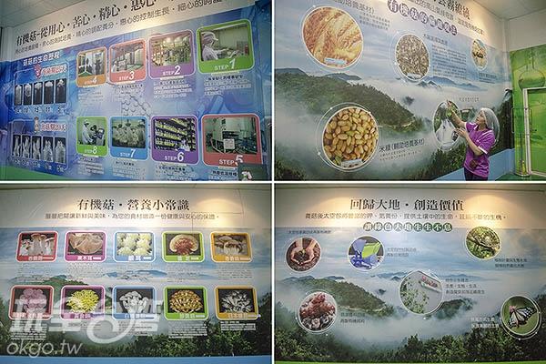 導覽人員貼心介紹著園區種植培養的各種香菇品種/玩全台灣旅遊網特約記者陳健安攝