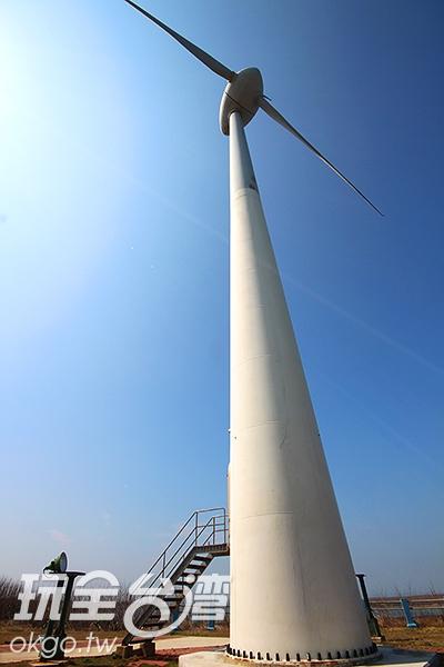 風車們為了我們全年無休,努力的運轉著/玩全台灣旅遊網攝