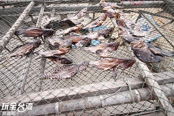 在島上可看見漁民在曬魚貨,這就是最悠哉的生活啊!/玩全台灣旅遊網攝