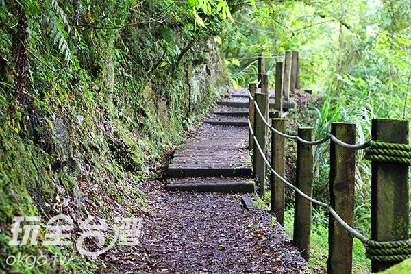 延著步道進入杉林溪遊樂區內,享受芬多精的洗禮/玩全台灣旅遊網盛軒提供