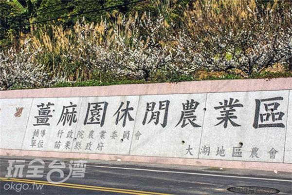 姜麻園休閒園區裡不僅有草莓,在不同季節也有不一樣的特產唷!/玩全台灣旅遊網特約記者57魔法Ling攝