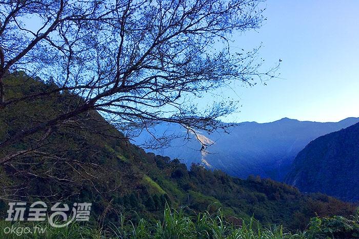前進玉山,看疊翠山巒/玩全台灣旅遊網攝