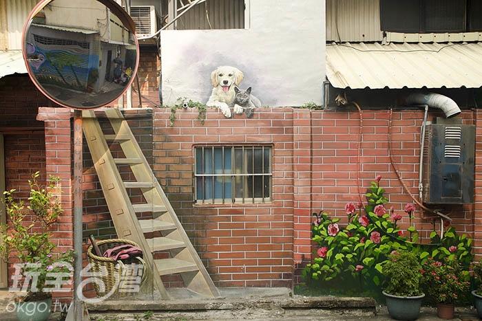在一隅我們還發現了喵星人串門子/玩全台灣旅遊網特約記者陳健安攝