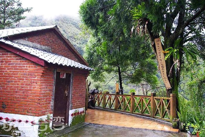 好山好水的清泉部落讓三毛文思泉湧,三毛最喜愛坐在夢屋旁的肖楠樹下沉思靜坐了。/玩全台灣旅遊網特約記者smallting攝