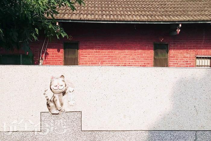 抓到魚的貓/玩全台灣旅遊網特約記者蔡忻容攝