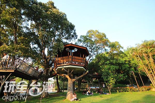 以不破壞大自然生態為主,將建築配合生態,讓樹屋融合在樹林之中/玩全台灣旅遊網攝
