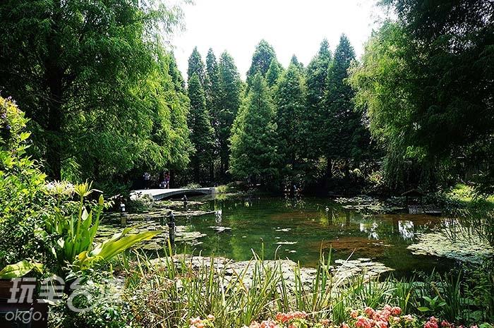 菁芳園美的像是會有小精靈從樹叢裡竄出般讓人心醉/玩全台灣旅遊網特約記者愛聿攝