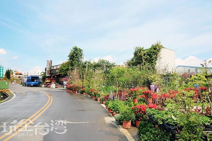 延著自行車道前行就像是進入童話世界的祕密花園/玩全台灣旅遊網特約記者wantsunny攝