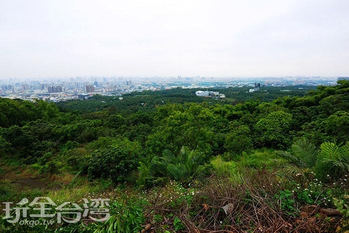 穿過九號步道的果園便可看見一望無際的美麗景色/玩全台灣旅遊網特約記者吳明倫攝