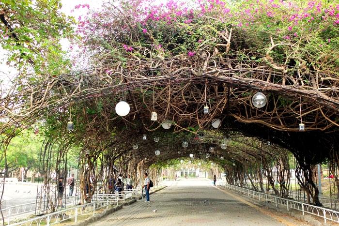 美輪美奐的植物遮陽棚,清晨或傍晚經過,常會看到婆婆媽媽們聚在這裡跳舞/玩全台灣旅遊網特約記者阿辰攝