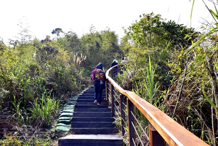 太平雲梯為單向進出,走完太平雲梯後,分為兩條路線,一是回到遊客中心,另一路線就是前往
