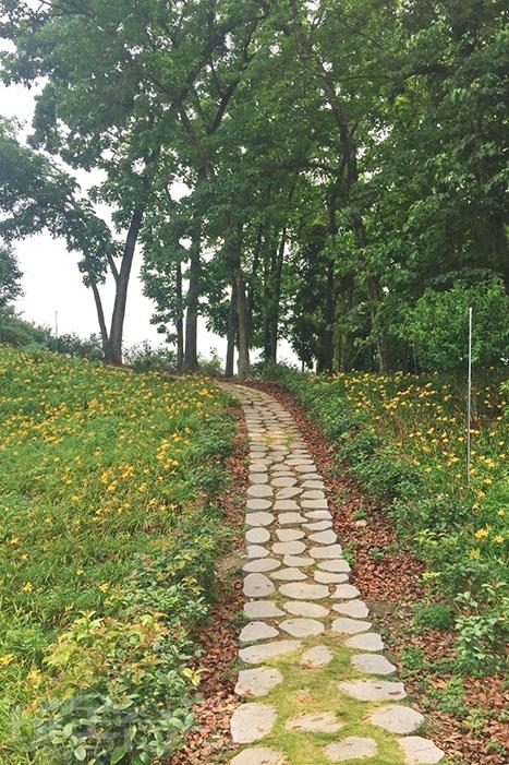 園區內規劃有賞花步道,請大家要乖乖的走在步道上,不要破壞花海/玩全台灣旅遊網特約記者阿湖與阿釵攝