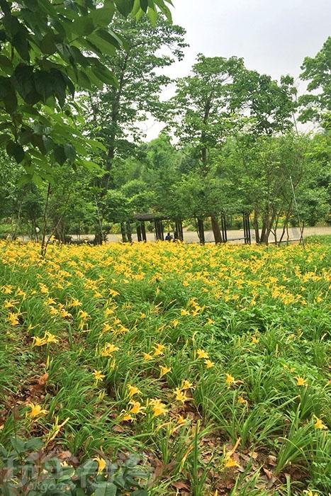 全園區共有2公頃大小,讓你逛到腳痠!!/玩全台灣旅遊網特約記者阿湖與阿釵攝