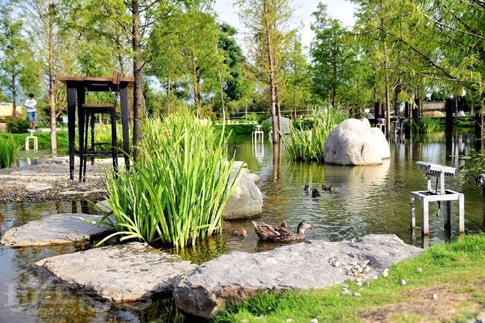 園區生態自然,裡面還可看見不少的雞、鴨、鵝呢~/玩全台灣旅遊網特約記者阿辰攝