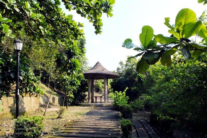 沿途皆有樹蔭遮蔽,充滿芬多精的環境讓人心曠神怡/玩全台灣旅遊網特約記者阿辰攝