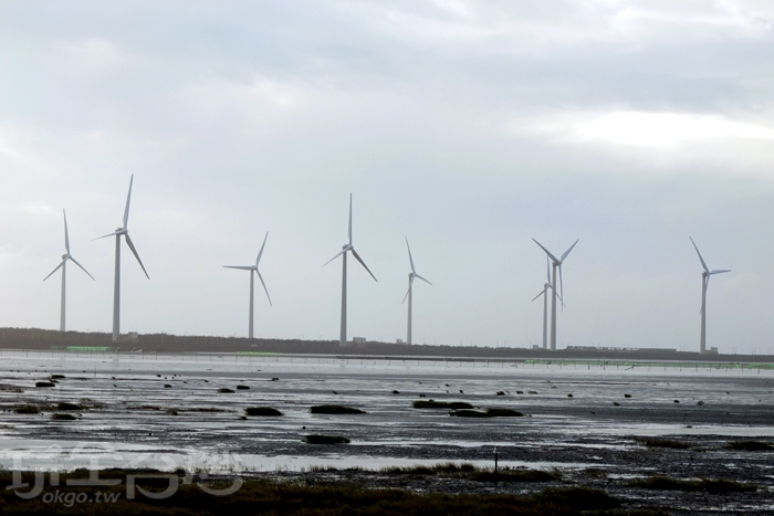 排列整齊的發電風車。/玩全台灣旅遊網特約記者阿辰攝