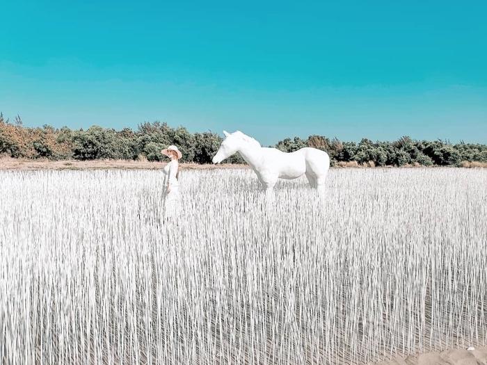 最火紅的白馬,一起來當個精靈或王子吧!/照片提供_IG搜尋:@lineva0615