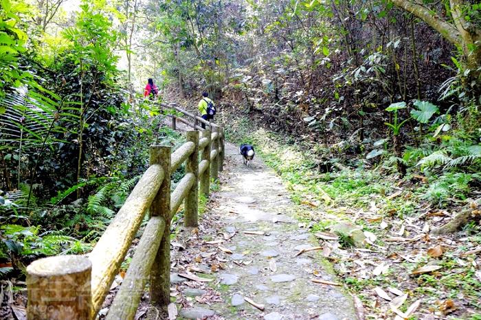 1號步道入口處/玩全台灣旅遊網特約記者小玉兒攝