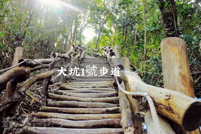 大坑1號步道/玩全台灣旅遊網特約記者小玉兒攝