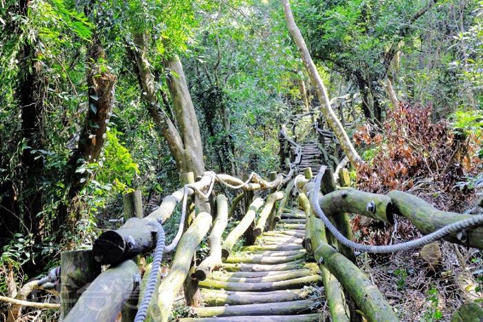 大坑木梯步道/玩全台灣旅遊網特約記者小玉兒攝