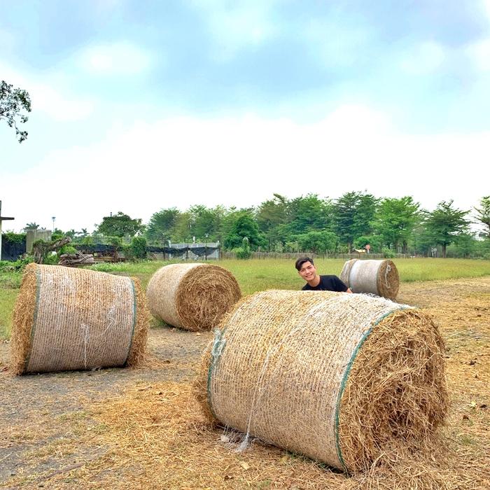 南州糖廠藝術造景/玩全台灣旅遊網特約記者_HaoChen