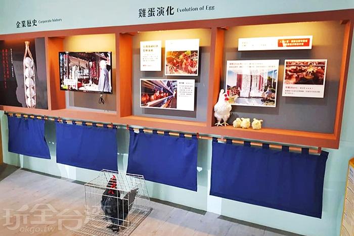 展覽館內詳細記錄了雞蛋演化的歷史。/玩全台灣旅遊網特約記者殘月攝