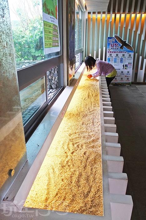 館內設有貝殼砂觸摸體驗區,提供遊客近距離觀察觸摸貝殼砂質/玩全台灣旅遊網特約記者阿辰攝