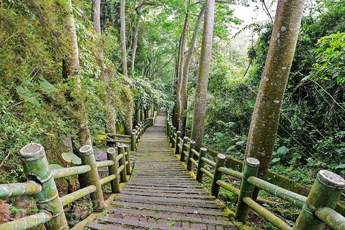 鳳凰谷鳥園-好漢坡/玩全台灣旅遊網特約記者小玉兒攝