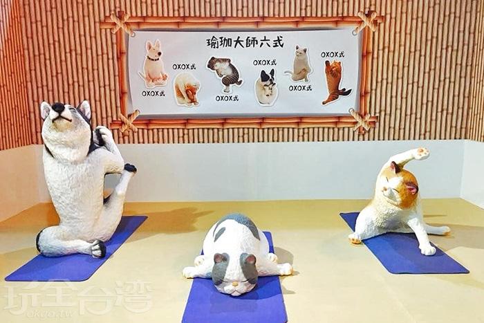 朝隈俊男的超高人氣作品《狗瑜伽大師》與《貓瑜伽大師》系列難得同場展出。/玩全台灣旅遊網特約記者殘月攝