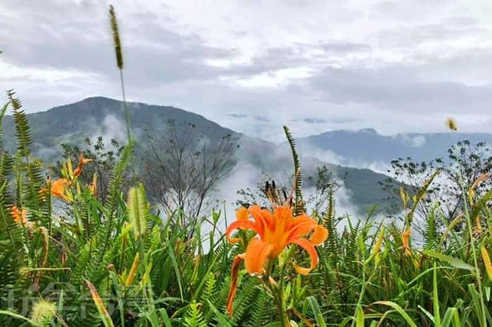 從金針山上遠望太麻里,沉溺在其美景不忍離去。/玩全台灣旅遊網特約記者隱月攝