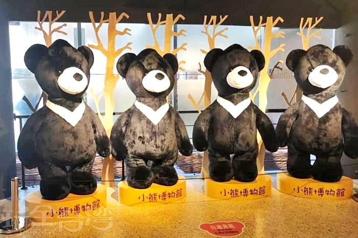 這裡也有胸前有白色V形狀的台灣黑熊唷。/玩全台灣旅遊網特約記者隱月攝